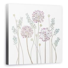 Tablou Canvas - Allium, Floral, Muscari, Seedpods, Flori, fig. 1