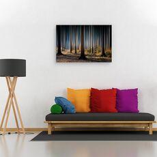 Tablou canvas - Lemn mistic, Peisaj, Toamna, Lumina, fig. 2