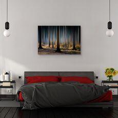 Tablou canvas - Lemn mistic, Peisaj, Toamna, Lumina, fig. 3