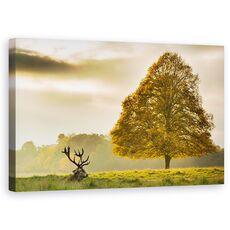 Tablou Canvas - Cerb, Animal, Camp, Peisaj, Copac, Natura, fig. 1