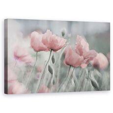 Tablou Canvas - Incet, Floare, Vara, Romantic, Gradina, Roz, Mac, fig. 1