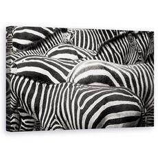 Tablou Canvas - Impreuna, Zebra, Dungi, Linii, fig. 1