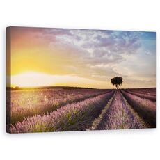 Tablou Canvas -  Destinatie Lavanda, fig. 1