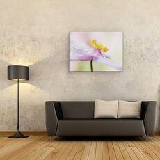 Tablou Canvas - Anemona Japoneza, fig. 2