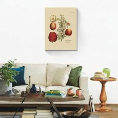 Tablou Canvas - Antique Apples, fig. 1