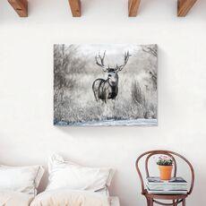 Tablou Canvas - Animal, Cerb, Natura, Toamna, fig. 2