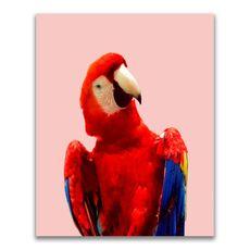 Tablou Canvas - Animal, Pasare, Papagal, Color, fig. 1