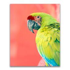 Tablou Canvas - Animal, Pasare, Papagal, Verde, fig. 1