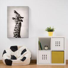 Tablou Canvas -  Girafe, Africa, Pereche, fig. 2