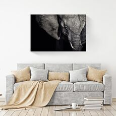Tablou Canvas -  Elefant, Africa, fig. 2