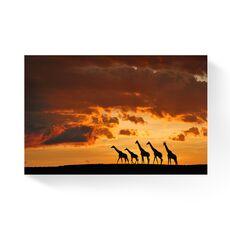 Tablou Canvas -  Girafe, Familie, Soare, Apus, fig. 1