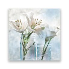 Tablou Canvas - Floral, Flori, Crin, Vaza, Alb, fig. 1