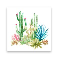 Tablou Canvas -  Cactus I, Aloe, Verde, Plante, Pictura, fig. 1