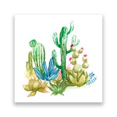 Tablou Canvas -  Cactus II, Aloe, Verde, Plante, Pictura, fig. 1