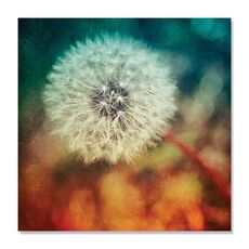 Tablou Canvas - Dandelion I, Floare, Alb, Maro, fig. 2