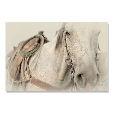 Tablou Canvas - Cow Pony, fig. 2