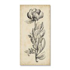 Tablou Canvas - Frumusete unica IV, Floare, Alb negru, Retro, Maro, Gri, fig. 2
